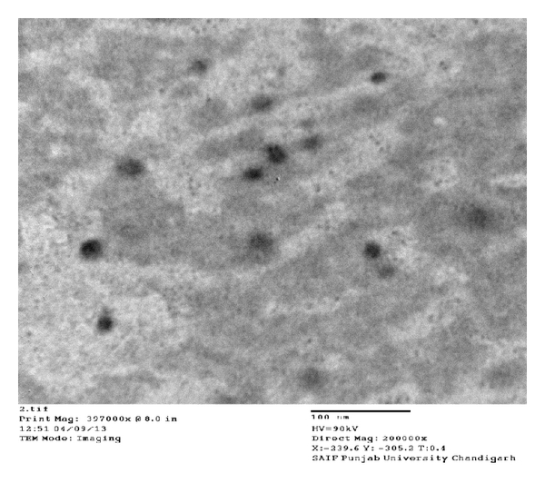 560962.fig.002