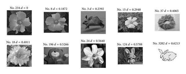 (b) Flower retrieval results