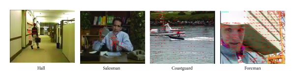 (a) Original video sequences and their motion vectors distribution