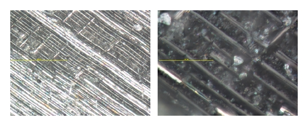 (a) Control sample fracture surface