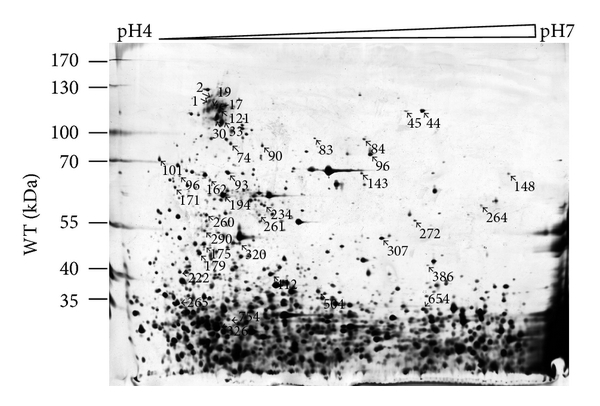 908121.fig.001a