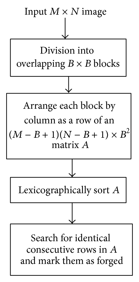 975456.fig.007a